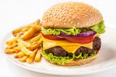 Delicious Hamburger with French Fries