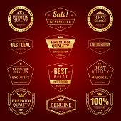 Vintage vector design elements. Retro style golden typographic labels, tags, badges, stamps, arrows