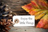 Autumn Label With Enjoy The Little Things
