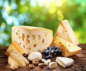 Different types of cheese over old wooden table with green nature background.
