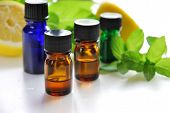 image of mint leaf  - essential oils with lemon and mint leaves