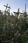Wooden crosses at Lithuanian graveyard against blue sky