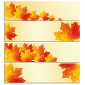 Set Of Banners With Yellow, Orange, Red Maple Leaves