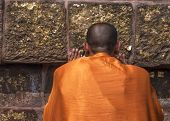 Buddhist Monk Prays At The Dhamekh Stupa.