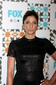 LOS ANGELES - JUL 20:  Chelsea Peretti at the FOX TCA July 2014 Party at the Soho House on July 20,