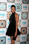 LOS ANGELES - JUL 20:  Emily Rios at the FOX TCA July 2014 Party at the Soho House on July 20, 2014