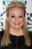 LOS ANGELES - JUL 20:  Jacki Weaver at the FOX TCA July 2014 Party at the Soho House on July 20, 2014 in West Hollywood, CA