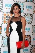 LOS ANGELES - JUL 20:  Natalie Brown at the FOX TCA July 2014 Party at the Soho House on July 20, 20