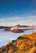 Bromo Mountain In Tengger Semeru National Park At Sunrise, East Java, Indonesia