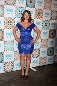 LOS ANGELES - JUL 20:  Kether Donohue at the FOX TCA July 2014 Party at the Soho House on July 20, 2