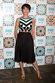 LOS ANGELES - JUL 20:  Katie Aselton at the FOX TCA July 2014 Party at the Soho House on July 20, 20
