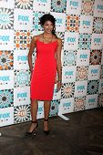 LOS ANGELES - JUL 20:  Meera Rohit Kumbhani at the FOX TCA July 2014 Party at the Soho House on July 20, 2014 in West Hollywood, CA