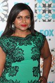 LOS ANGELES - JUL 20:  Mindy Kaling at the FOX TCA July 2014 Party at the Soho House on July 20, 2014 in West Hollywood, CA