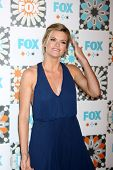 LOS ANGELES - JUL 20:  Missi Pyle at the FOX TCA July 2014 Party at the Soho House on July 20, 2014