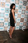 LOS ANGELES - JUL 20:  Tamara Taylor at the FOX TCA July 2014 Party at the Soho House on July 20, 20