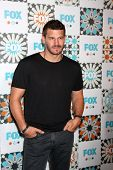 LOS ANGELES - JUL 20:  David Boreanaz at the FOX TCA July 2014 Party at the Soho House on July 20, 2