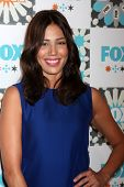 LOS ANGELES - JUL 20:  Michaela Conlin at the FOX TCA July 2014 Party at the Soho House on July 20,