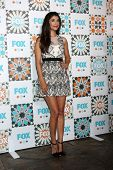 LOS ANGELES - JUL 20:  Hannah Simone at the FOX TCA July 2014 Party at the Soho House on July 20, 20