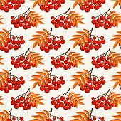 Autumn Seamless Pattern With Rowan Berries. Vector Background.