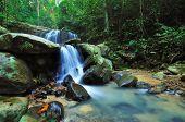 Waterfall in a Borneo Jungle, kota kinabalu