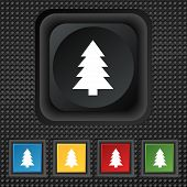 Christmas Tree Sign Icon. Holidays Button. Set Of Colored Buttons. Vector