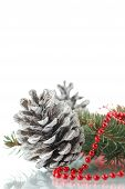 Christmas Fir-cone With Fir Branches