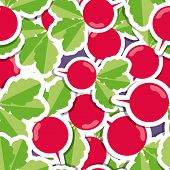 Radish Pattern. Seamless Texture With Ripe Radishes