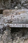 image of skull bones  - Human bones and skulls in Ketekesu (Tana Toraja South Sulawesi Indonesia) traditional burial site with semi open old wooden coffins placed in caves or hanging from cliffs.