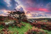 Beautiful Sunrise In Cornwall