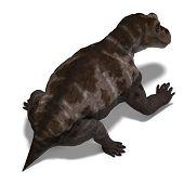 Dinosaurio Keratocephalus