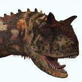 image of carnivores  - Carnotaurus was a theropod carnivorous dinosaur that lived in Argentina in the Cretaceous Period - JPG