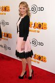 LOS ANGELES - JAN 11:  Katherine Heigl at the
