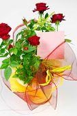 Roses In Flowerpot