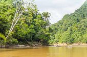 RURRENABAQUE, BOLIVIA, MAY 11, 2014: Local man travels in traditional wooden boat on Beni river