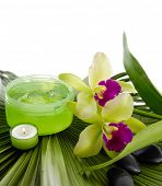 health spa and green palm texture