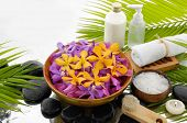 Spa Background with palm and wet stones with colorful orchid in bowl,towel