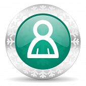 person green icon, christmas button