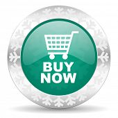 buy now green icon, christmas button