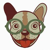 Illustration of French bulldog in glasses