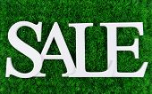Sale on grass background