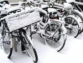 bicyclesinsnow