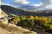 Village Of Upper Mustang In The Fall