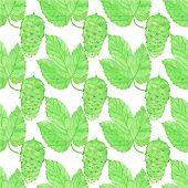 stock photo of brew  - Watercolor seamless pattern with hops on the white background - JPG