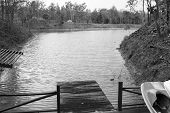 pic of pier a lake  - wooden pier beside the lake in forestblack and white - JPG