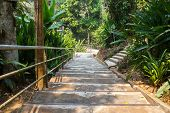 picture of stairway  - stairway for walking to the temple on the hill - JPG