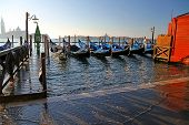 picture of tide  - many gondolas in Venice in Italy during high tide - JPG
