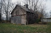 stock photo of illinois  - A very old barn with trees growing growing out of the wall in Plainfield - JPG