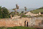 Ruins Of Cellah In Rabat With Storks