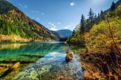 Scenic View Of The Arrow Bamboo Lake Among Colorful Fall Woods poster