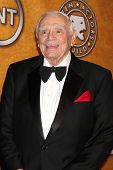 LOS ANGELES - JAN 30:  Life Achievement Award recipient Ernest Borgnine in the Press Room at the 201